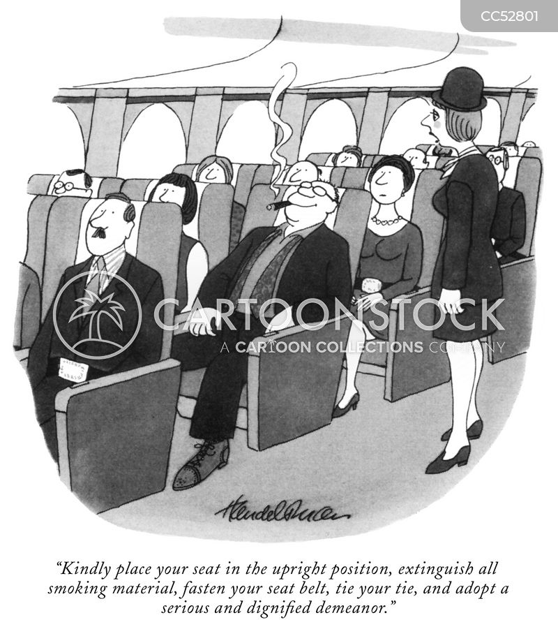 cabin crews cartoon