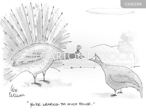 peahen cartoon