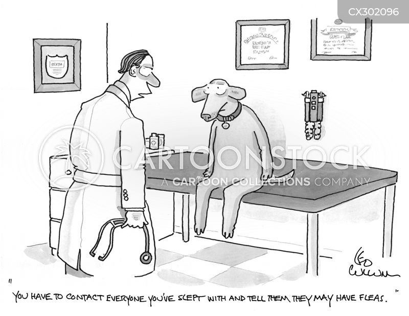 sexually transmitted diseases cartoon