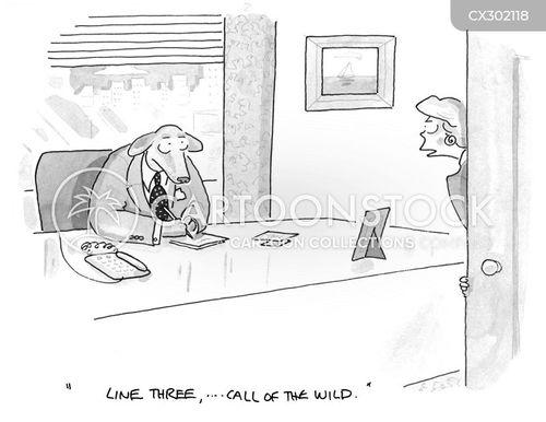 jack london cartoon