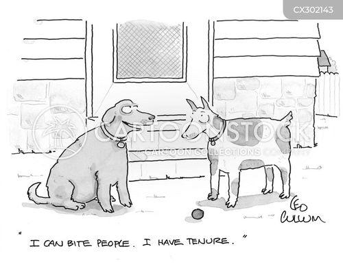 tenure cartoon