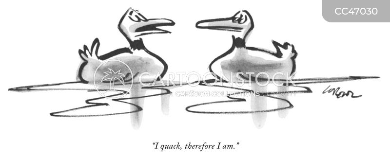 Duckling cartoon