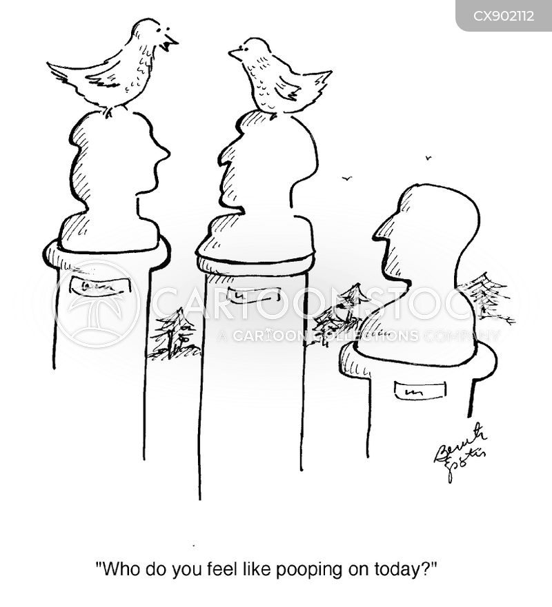 birdpoop cartoon