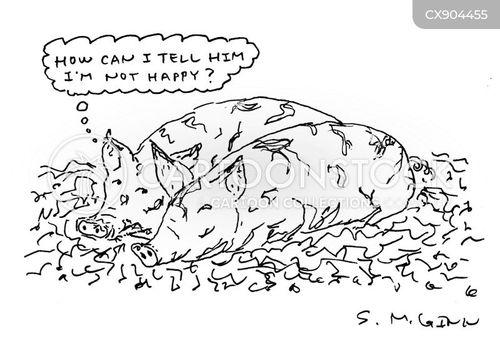 unhappy marriage cartoon