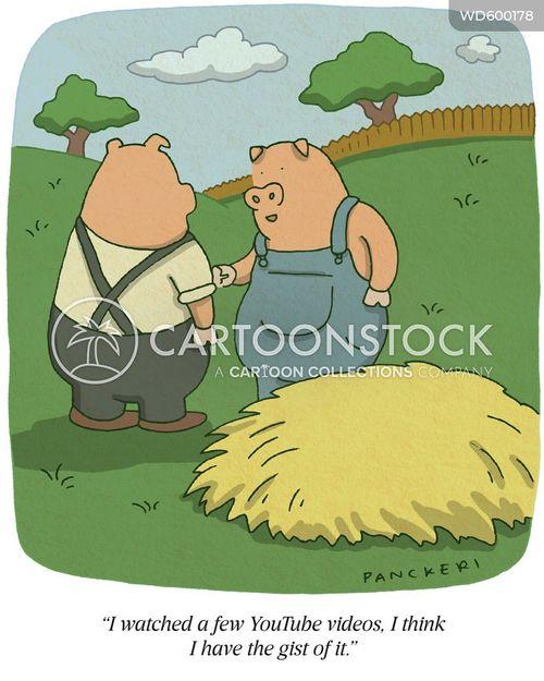videos cartoon