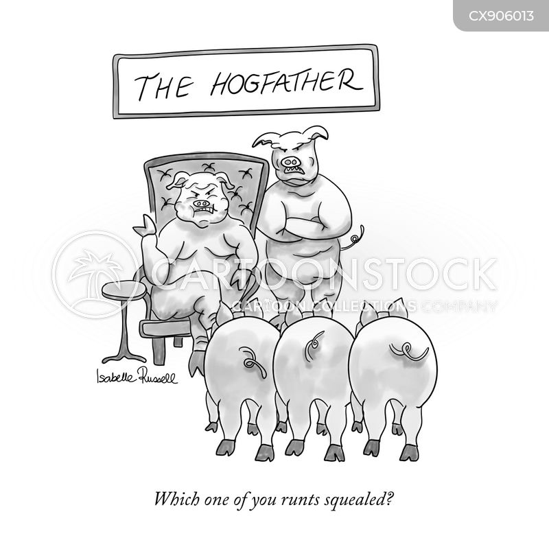 snitches cartoon
