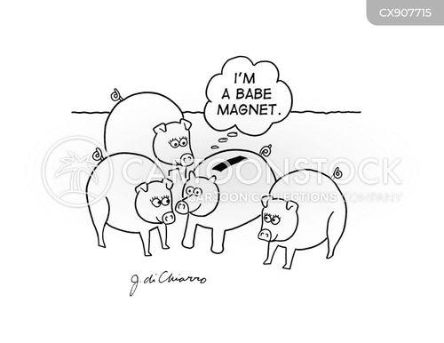 fancies cartoon
