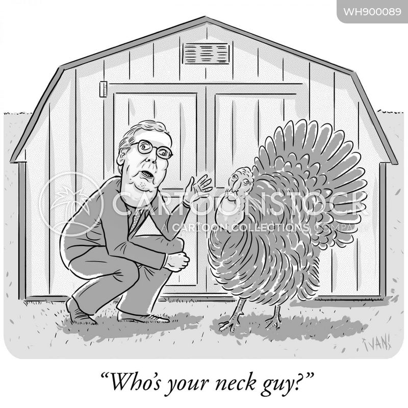 turkey farm cartoon