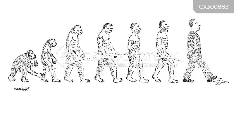 evolution of man cartoon
