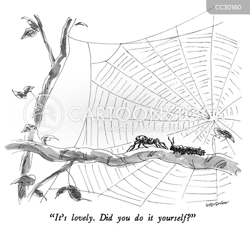 webs cartoon