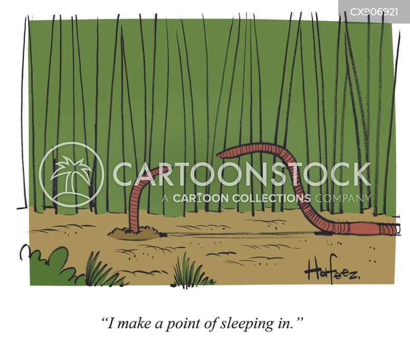 sleeping in cartoon