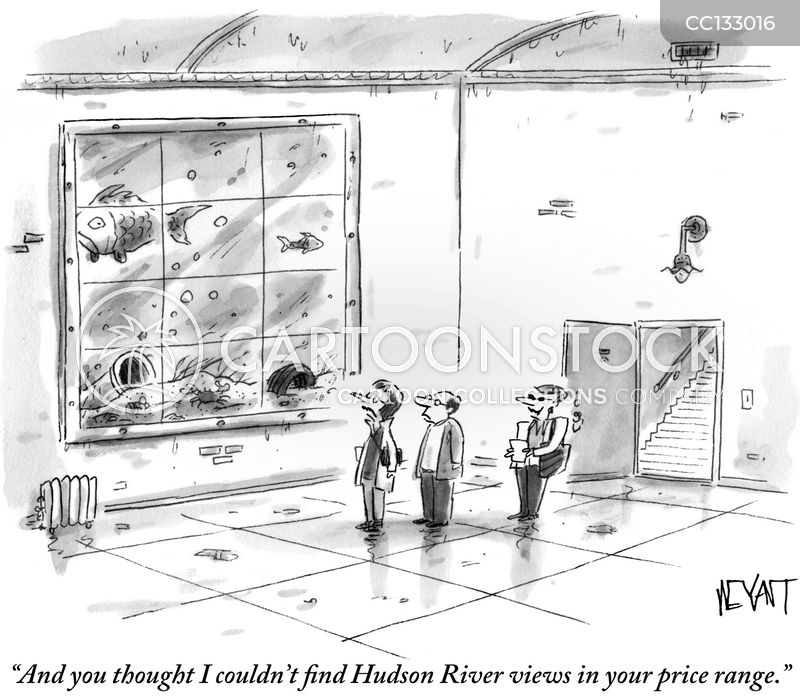 river view cartoon