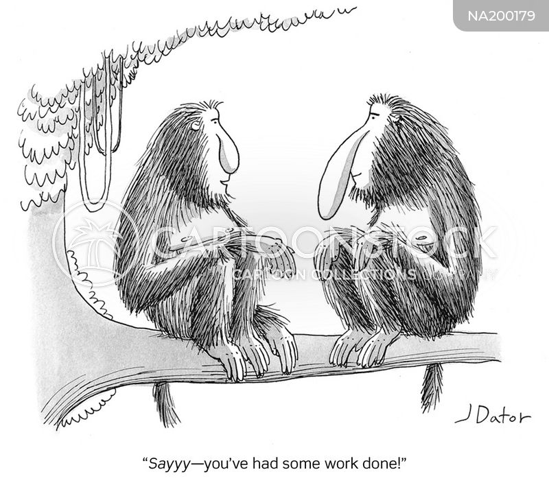 long-nosed monkeys cartoon