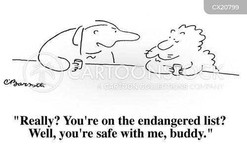 buddy cartoon