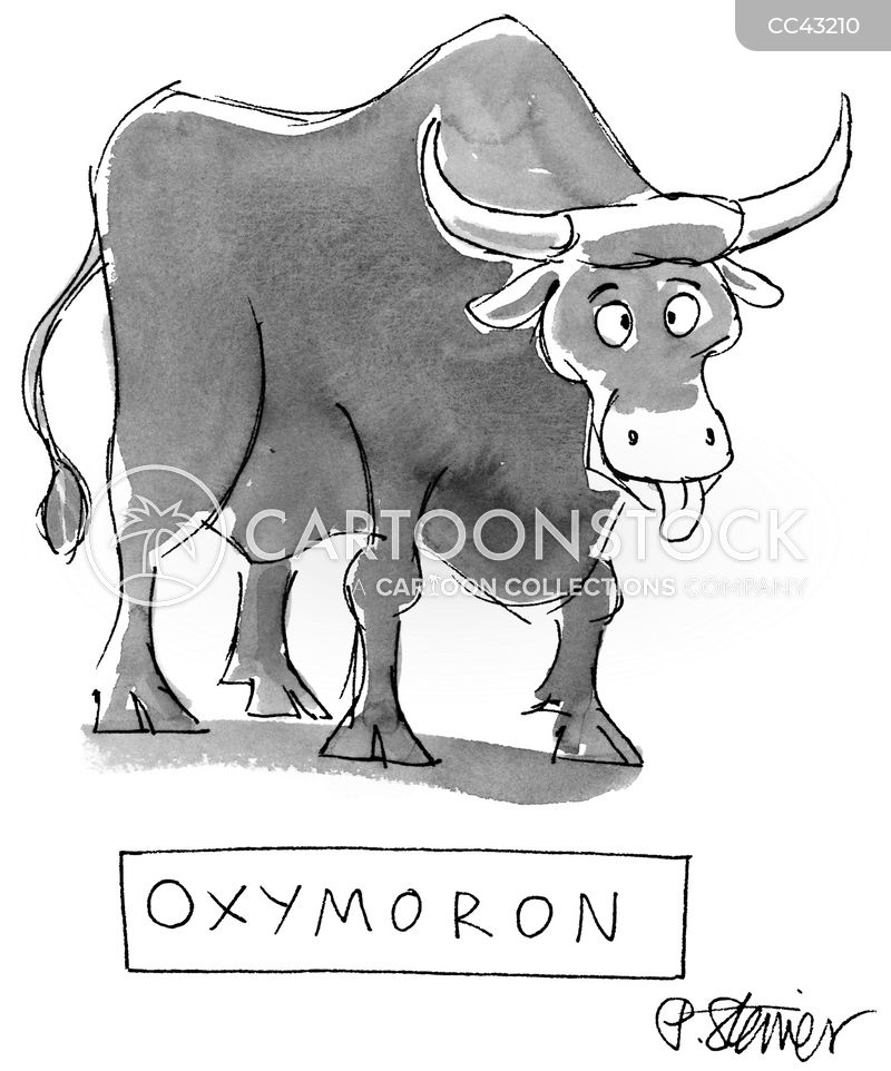 cows cartoon