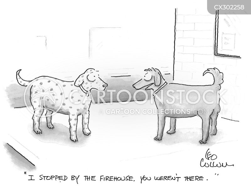 rescue dogs cartoon