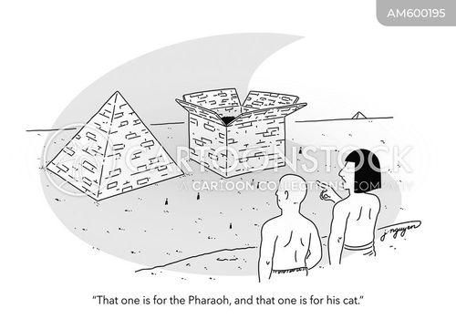 construct cartoon