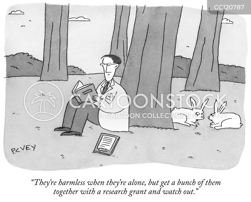 rabbits cartoon