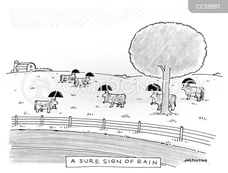 weather prediction cartoon