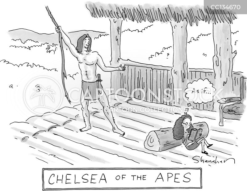 jungles cartoon