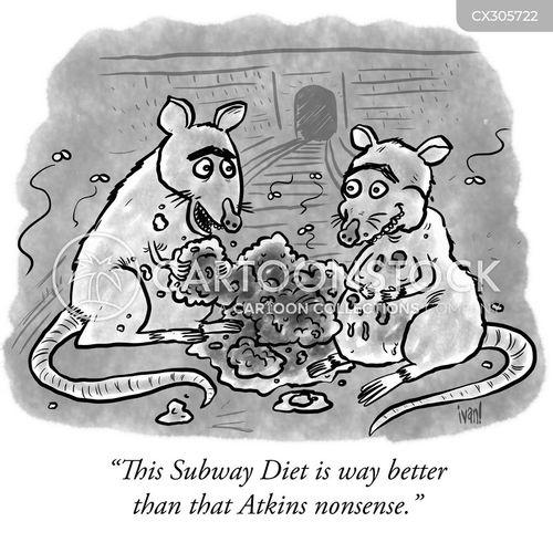 fad diets cartoon