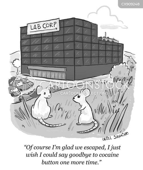 cocaine cartoon