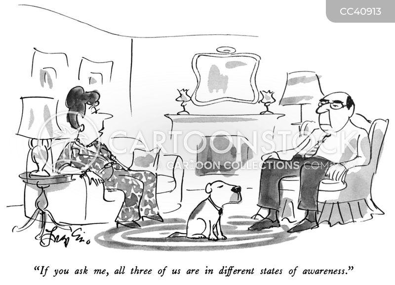 different cartoon
