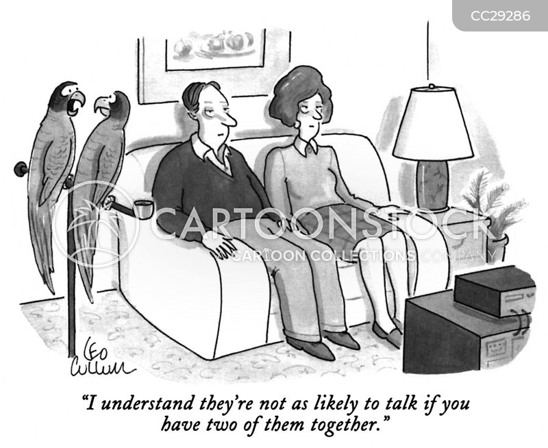 talking birds cartoon