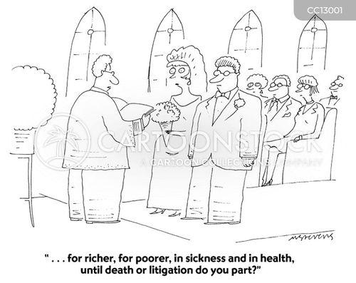 family law cartoon
