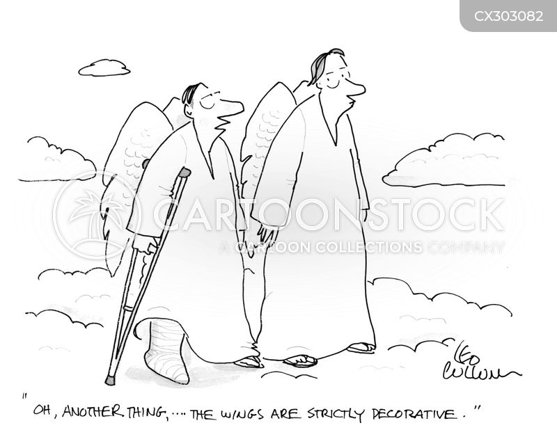 wings cartoon