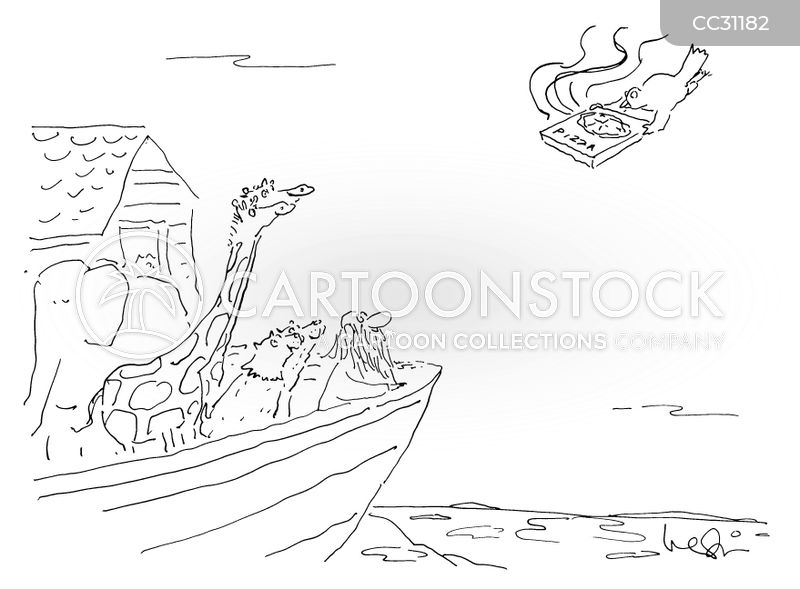 noah cartoon