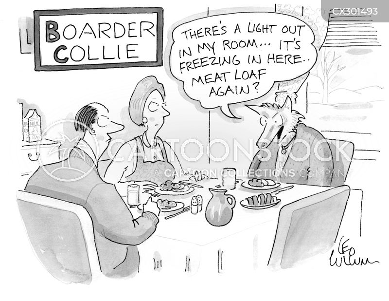 boarder cartoon