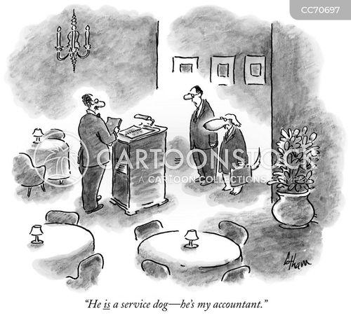 accounts cartoon