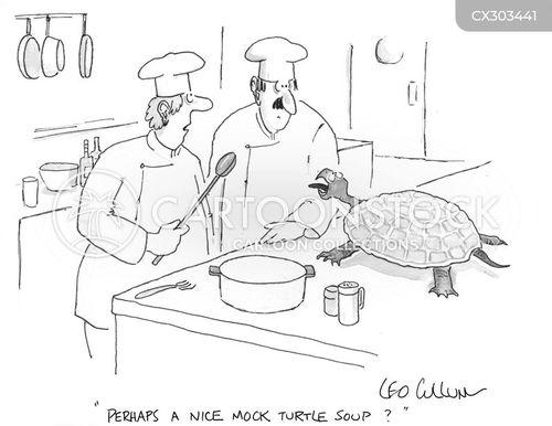 turtle soup cartoon