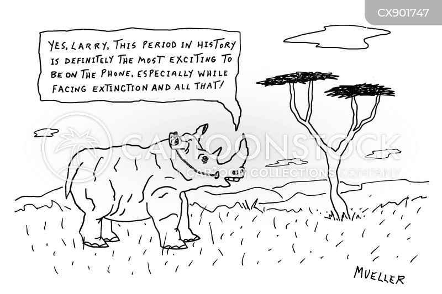 rarity cartoon