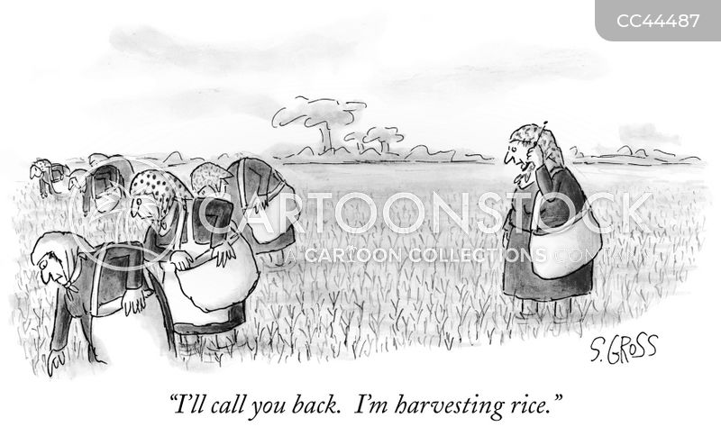 harvesting cartoon