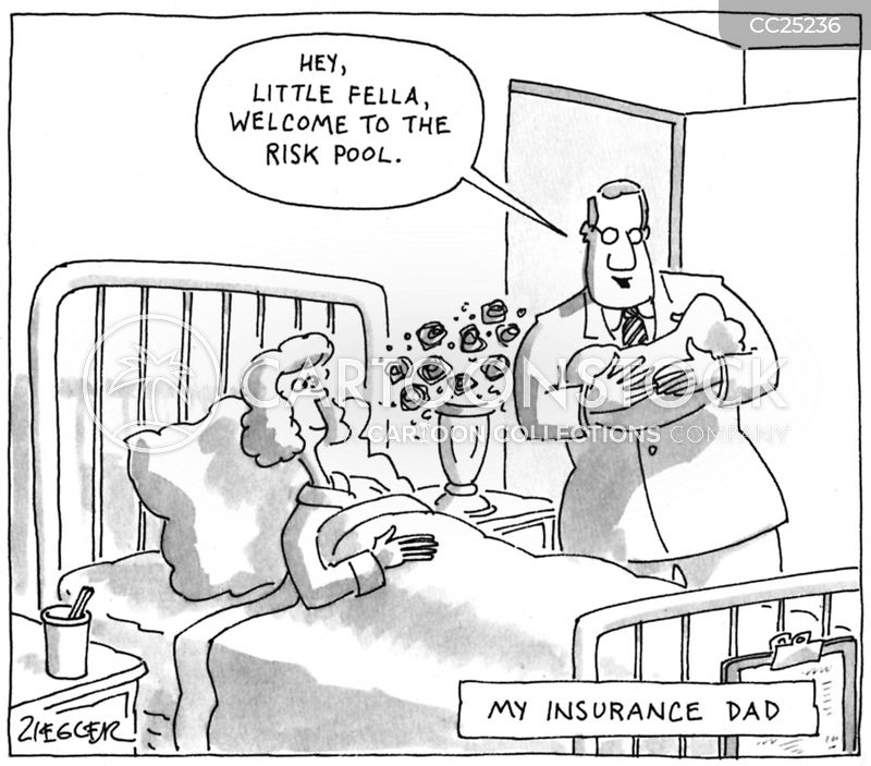 Insurance Risks cartoon