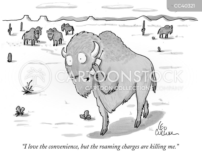 bison cartoon