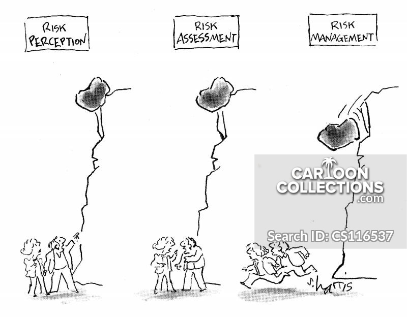 Risk Perceptions cartoon