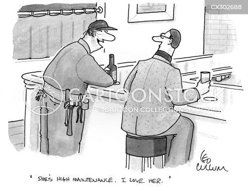 high maintenance cartoon