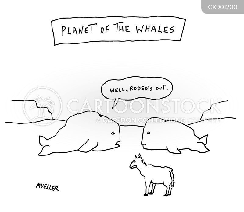 whales cartoon