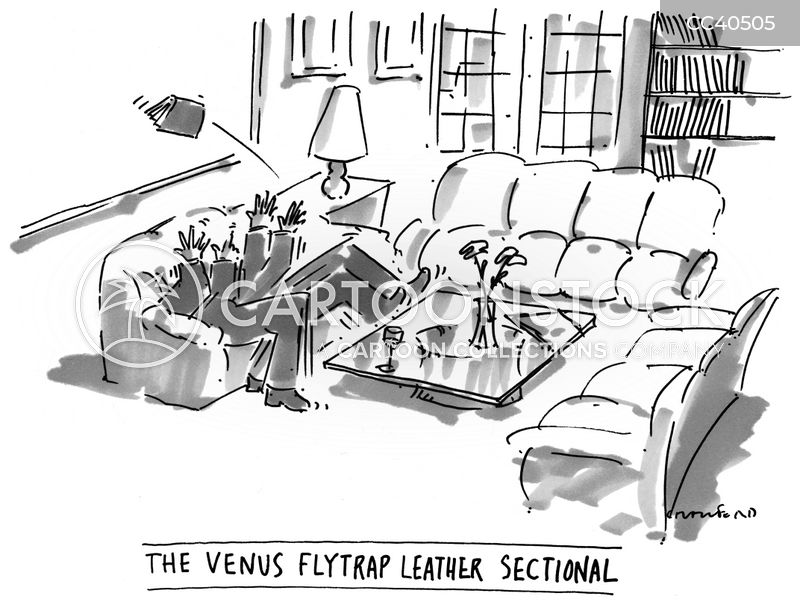 sofas cartoon