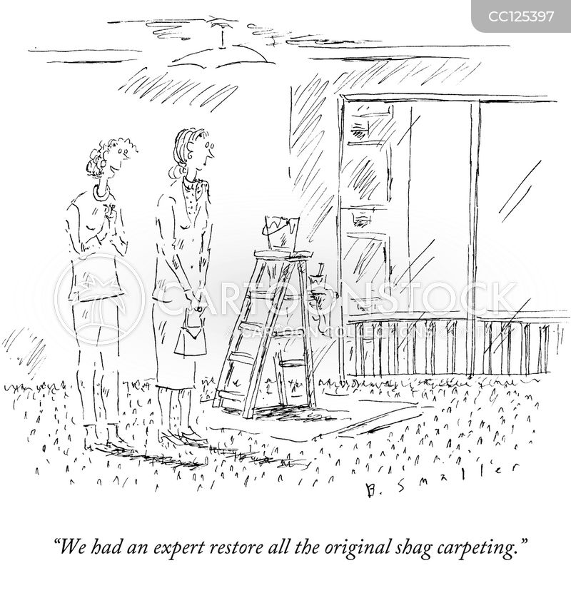 expertise cartoon