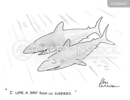 dietitians cartoon