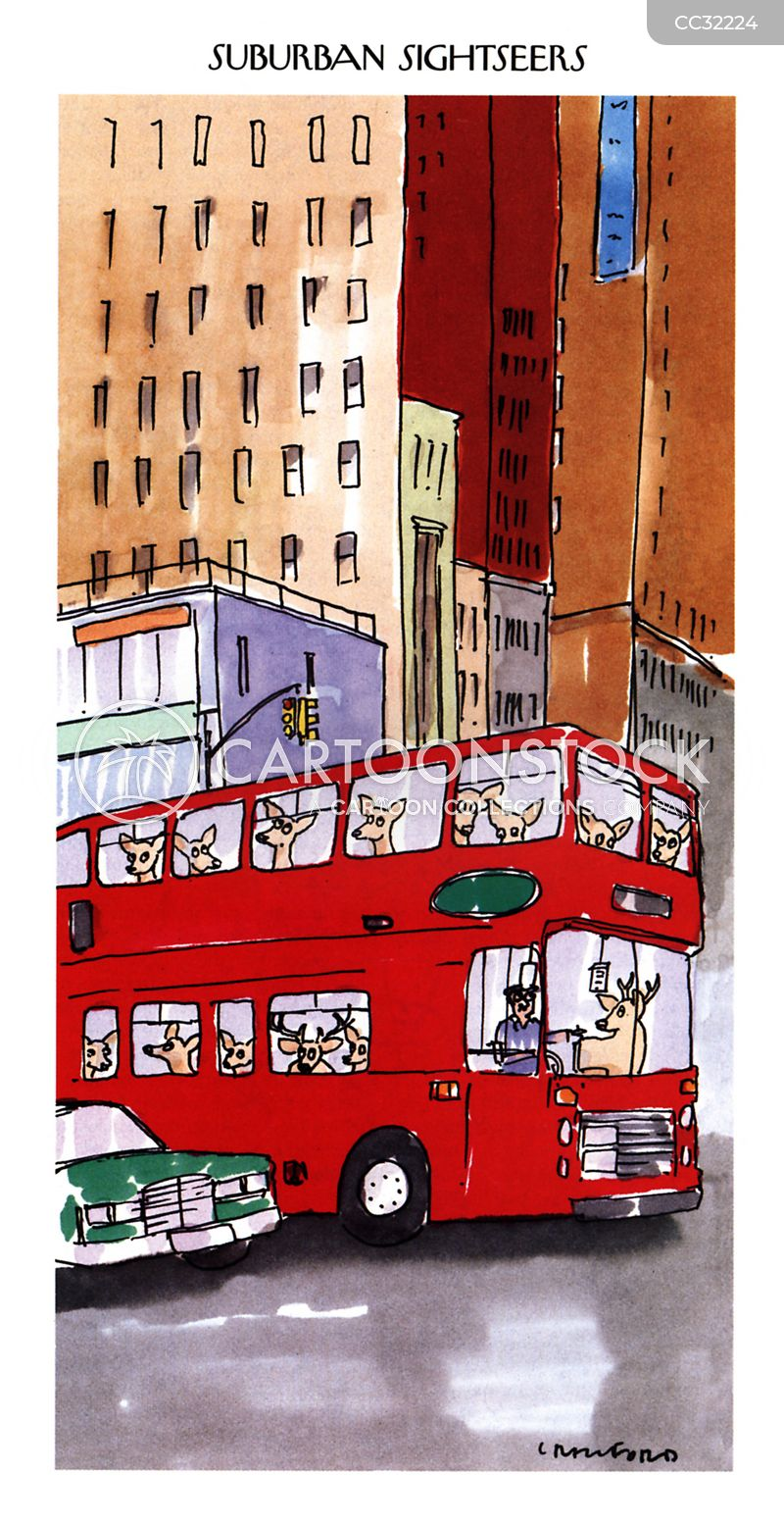 tourbus cartoon