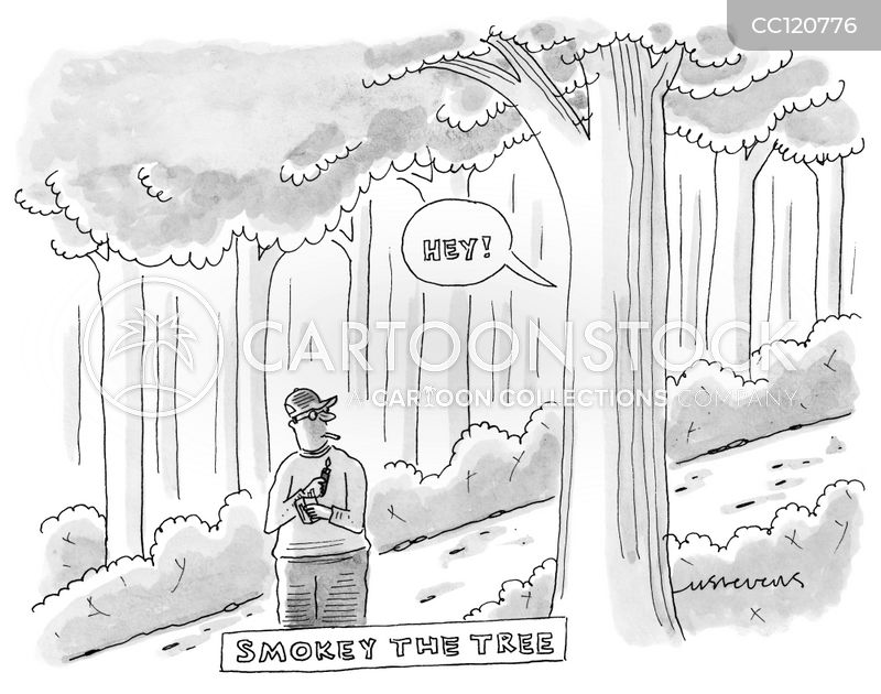 woods cartoon