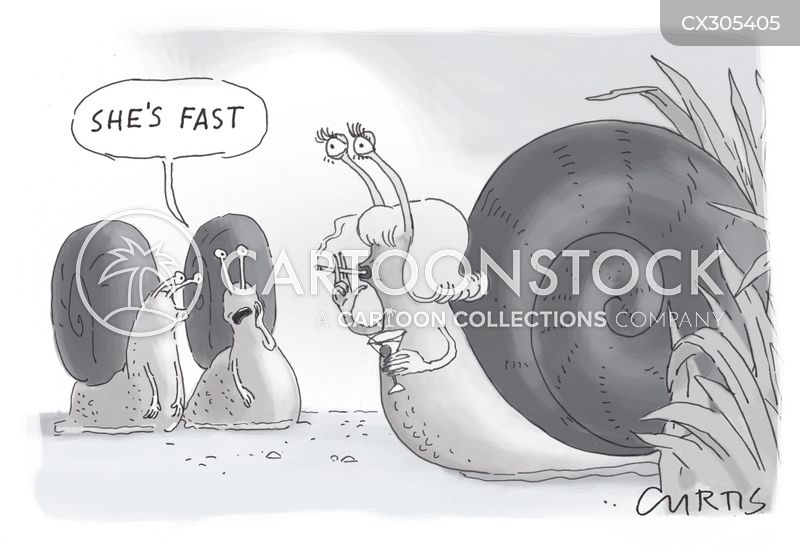 entomology cartoon