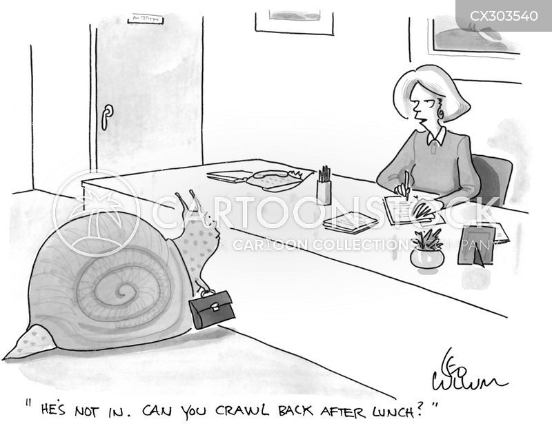 molluscs cartoon