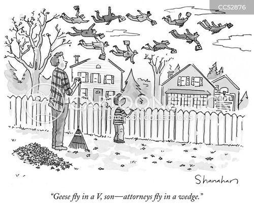 goose cartoon