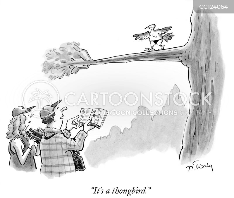 ornithology cartoon